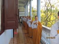Tam Phat _53
