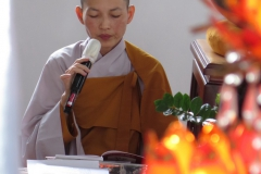 Tam Phat_36