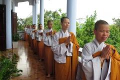 Tam Phat_55