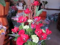 Hoa Dalat_37